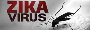 Cinco preguntas esenciales sobre el virus de zika que los médicos familiares deberían responder a sus pacientes, aten fam- 2016