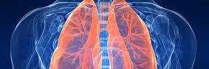 Manejo de las secreciones pulmonares en el paciente crítico,Enferm Intensiva- 2010