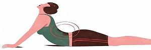 Adherencia al programa de ejercicios de estabilización lumbar en pacientes con dolor crónico de espalda baja, Cirugía y Cirujanos- 2016