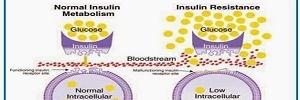 Omentina: papel en la resistencia a la insulina, inflamación y protección cardiovascular, Arch Cardiol Mex- 2016