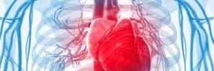 Comorbilidad cardiovascular en pacientes con enfermedad pulmonar obstructiva crónica en Canarias, Clin Investig Arterioscler- 2017