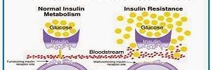 Metformina asociada a insulinoterapia en pacientes diabéticos tipo 1, Rev. chil. endocrinol. diabetes- 2015