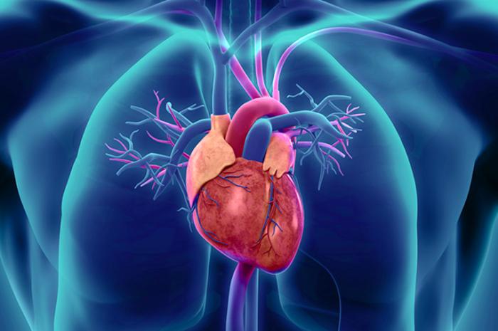 Reperfusión fármaco-invasiva en el manejo del infarto agudo de miocardio en Chile: Un llamado a la acción Rev Chil Cardiol 2019